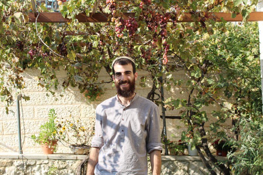 אליסף כהן
